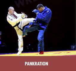 discipline-pankration