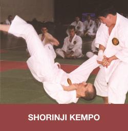 Le-Shorinji-Kempo
